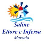 logo SALINE